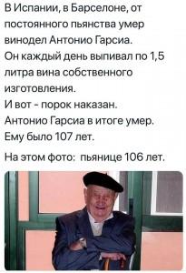 bcn vino starec