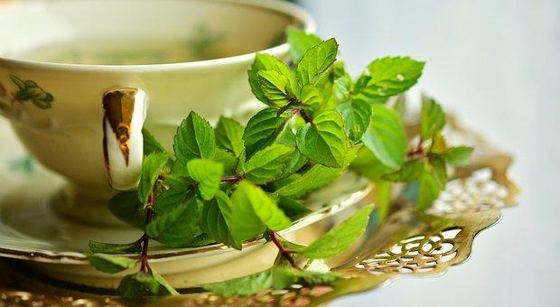 tea mint peppermint pix