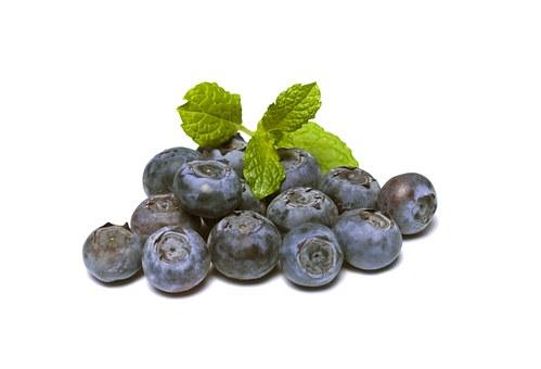 blueberries pix 2