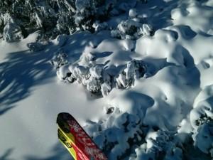 ski bez bog