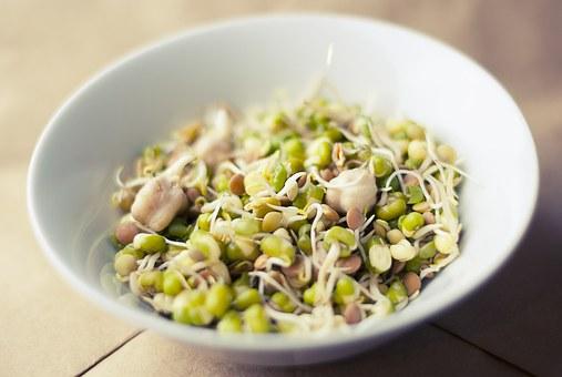 kylnove soybean pix