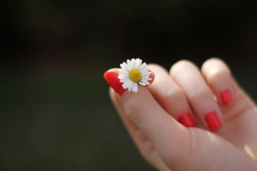 hand nokti pix