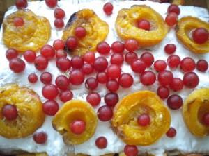 torta kajsii