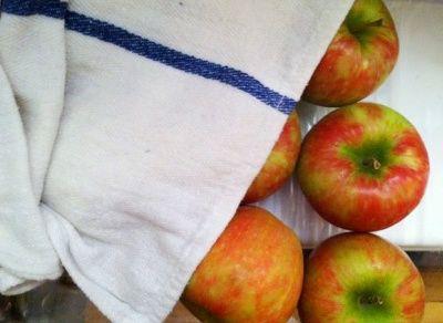 apple syhranenie