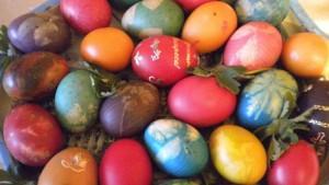 9m egg 1