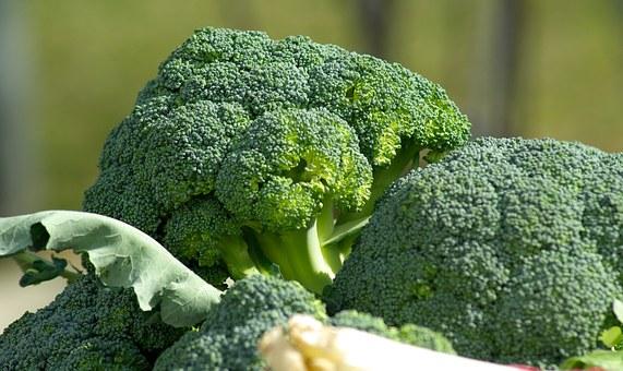 broccoli pix