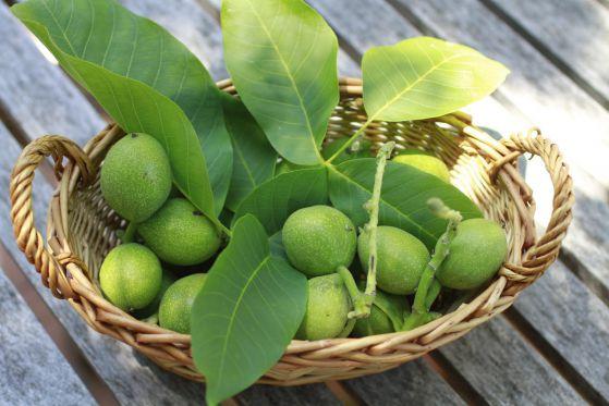 orehi zeleni