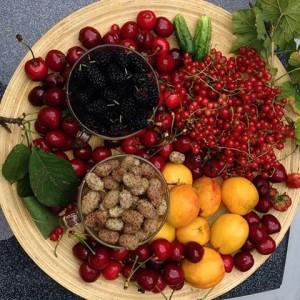 plodove leto