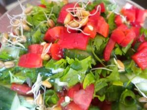 salata domati kylnove