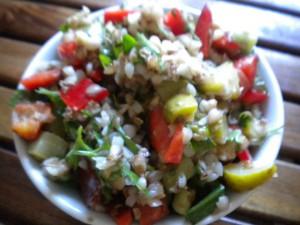 salata elda 1