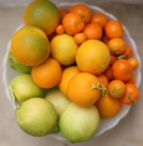 citrusi 1