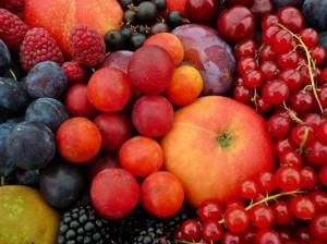 esen plodove
