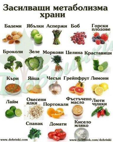 metabilizym hrani