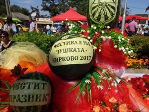 festival na chushkata 2017 1