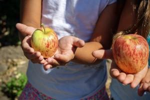 fruit-children