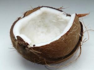 coconut pix 2