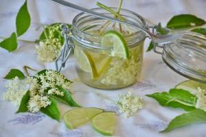 lemon water pix 2