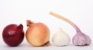 garlic luk pix
