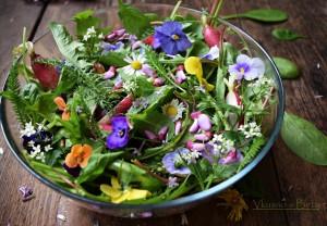 Пролетна зелена салата с диворастящи треви и цветя