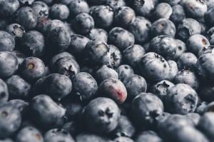 borovinki pix Blueberries