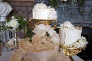 megan torta