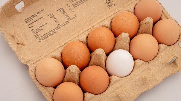 eggs pix