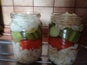 fermentirali zelenchuci 2