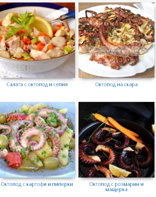 recepti s oktopod