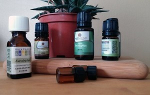 Eucalyptus oil pix