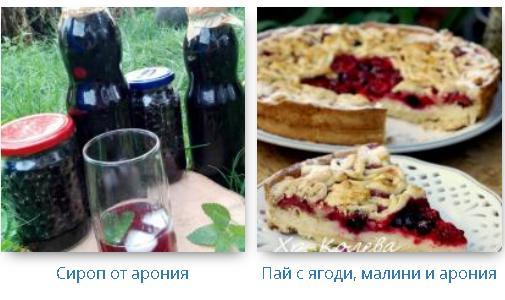 recepti s aronia
