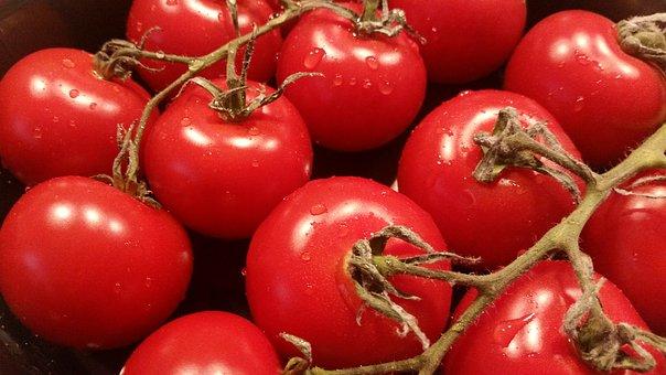 tomatoes pix 2