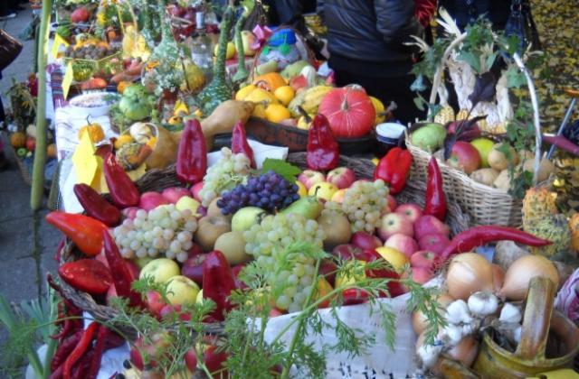 Festival of Rich Harvest