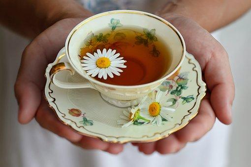 lajka tea pix
