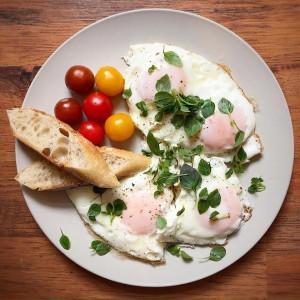 egg oleg