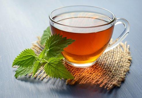 kopriva nettle pix tea